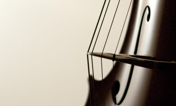 Cello strings close-up